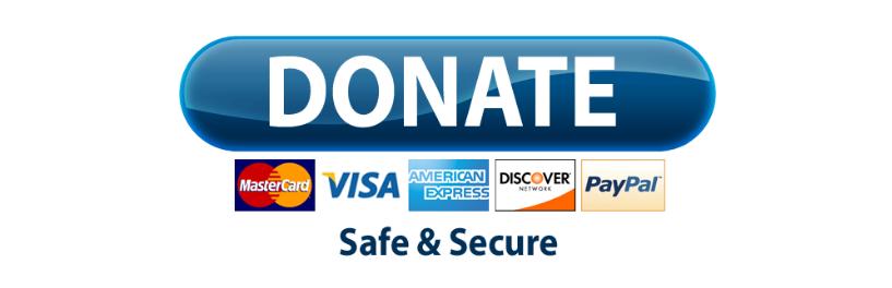 paypal-donate-button-png-wordpress-paypal-button-817